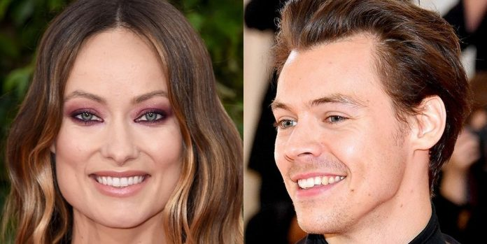 Harry Styles and Olivia Wilde watch PDA at a wedding