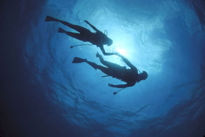 Get ready to dive in!  22 honeymoon diving excursions